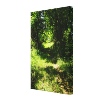 Peaceful Country Pathway Canvas Print