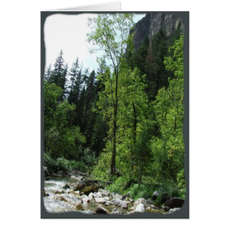 Peaceful Forest Sympathy Card