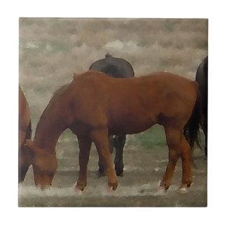 Peaceful Horse Herd Lead Mare Western Ceramic Tile