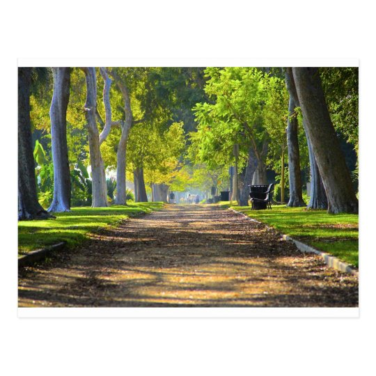 Peaceful Path Postcard