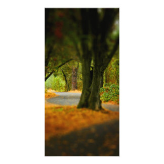 Peaceful Pathway Personalized Photo Card