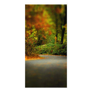 Peaceful Pathway Photo Cards