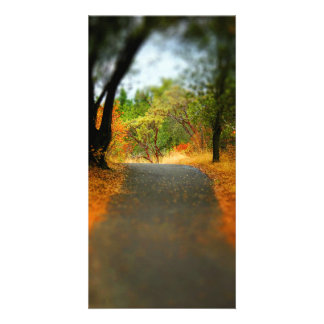 Peaceful Pathway Photo Greeting Card