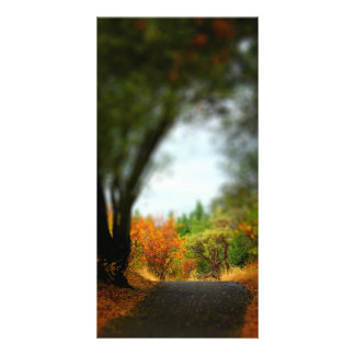 Peaceful Pathway Picture Card