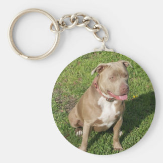 Peaceful Pitbull Basic Round Button Keychain