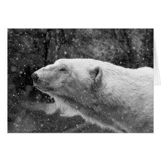 Peaceful Polar Bear Card