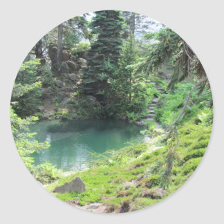 Peaceful Pond and Evergreen Trees Photography Round Sticker