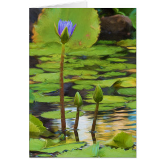 Peaceful Pond- Water Lily Greeting Card