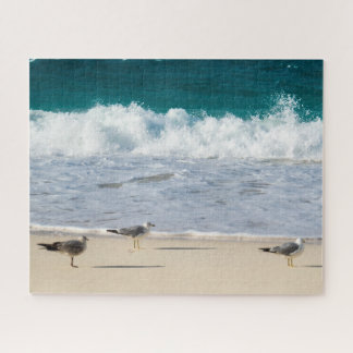 Peaceful Seagulls In The Sunlight Jigsaw Puzzle