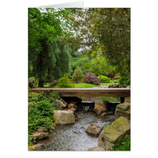 Peaceful Spring Creek Card