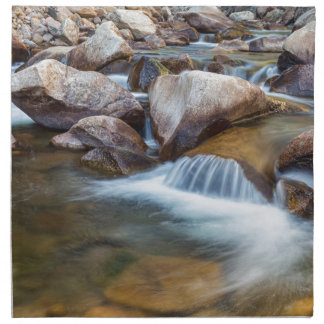 Peaceful Stream Napkin