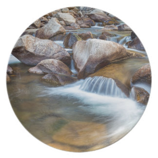 Peaceful Stream Plate