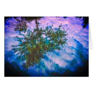Peaceful Tree Reflection Card