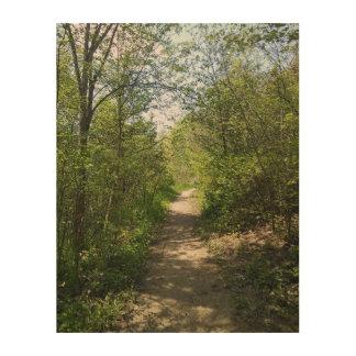 Peaceful Woodland Path Wood Wall Art