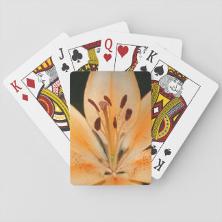 Peach Asiatic Lily Closeup Playing Cards