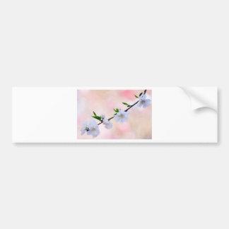 Peach Blossom Bumper Sticker