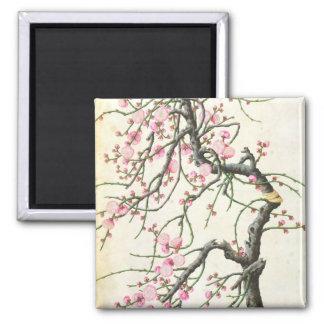 Peach blossom (colour on paper) square magnet