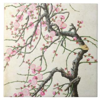 Peach blossom (colour on paper) tile