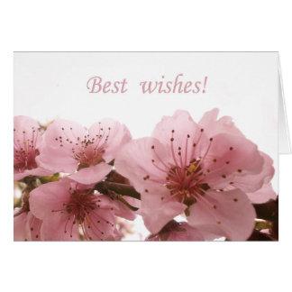 Peach Blossom design. Text. Card