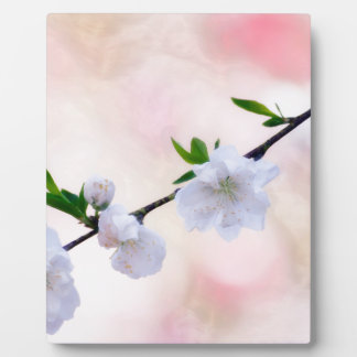 Peach Blossom Plaque