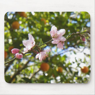 Peach Blossoms and Oranges Mousepad