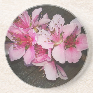 Peach Blossoms Coasters