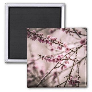Peach Blossoms Refrigerator Magnets