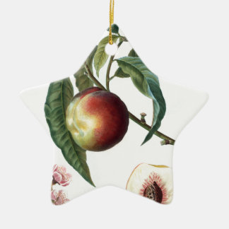 peach ceramic star ornament