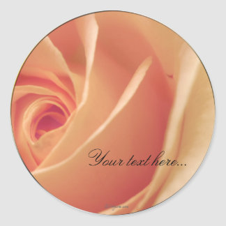 Peach Cream Rose Wedding Invitations Seals
