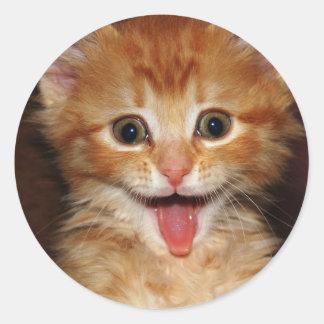 peach kitty round sticker