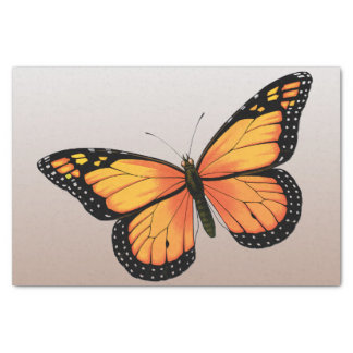 Peach Ombre Butterfly Tissue Paper