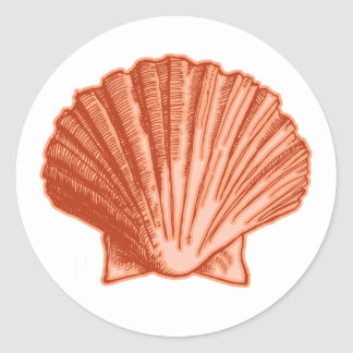 Peach Orange Seashell Stickers