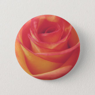 Peach Pink Rose Bloom Vintage Style Photograph 2 Inch Round Button