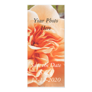 Peach rose wedding theme magnetic save the date magnetic card