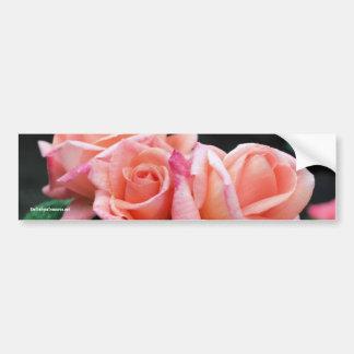 Peach Rosebuds Flower Photo Bumper Sticker