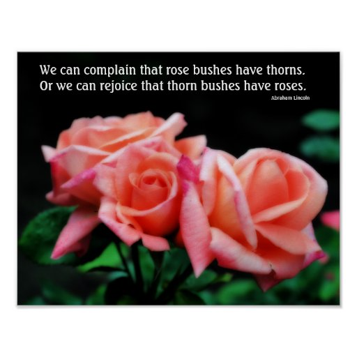 Peach Roses Attitude Quote Motivational Poster