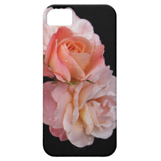 Peach Roses On Black Background iPhone 5 Cover