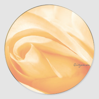 Peach Sherbet Rose Bud Wedding Envelope Seal