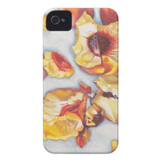 """Peaches"" Fine Art iPhone 4/4S Case"