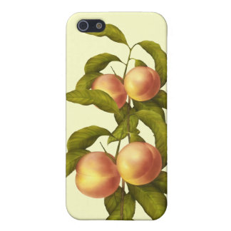 Peaches - SRF Case For The iPhone 5