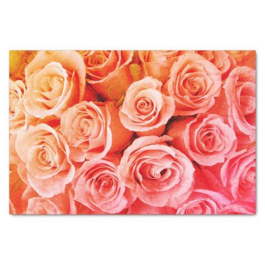 Peachy Orange Pink Roses Tissue Paper