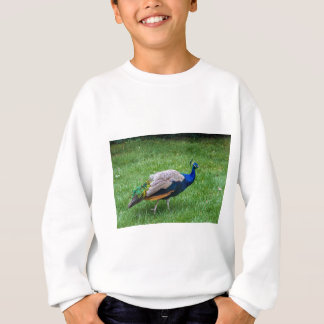 Peacock 2 sweatshirt