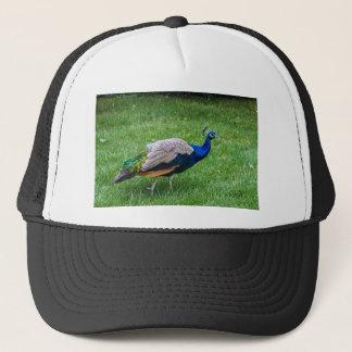 Peacock 2 trucker hat