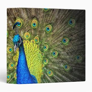 Peacock 3 Ring Binders