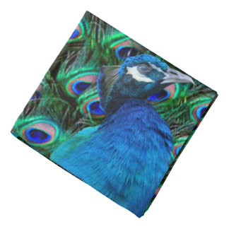 Peacock and Feather Kerchiefs