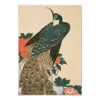Peacock and Peonies by Ando Hiroshige, RSVP Card