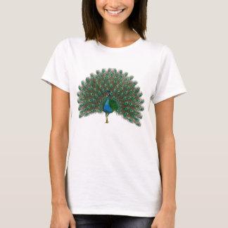Peacock  art t-shirts
