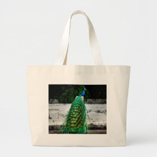 peacock beautiful feather art colours large tote bag