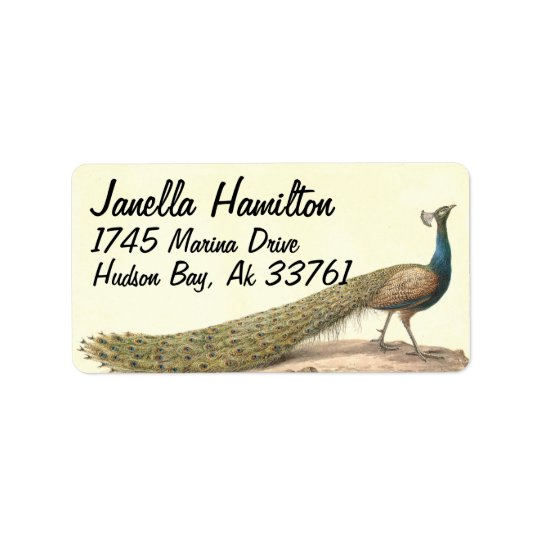 Peacock Bird Animal Wildlife Address Labels