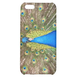 Peacock bird blue feathers photo iphone 4 case